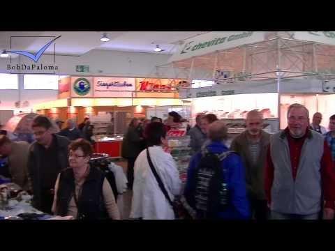 International Pigeon Market Kassel, Germany 2014