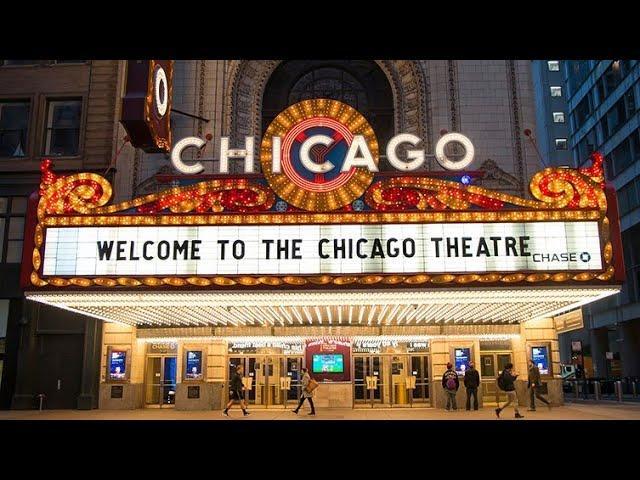 USA CHICAGO WYSYLKA GOŁĘBI PIGEONS SHIPPING TEL +49 1511 290 1511