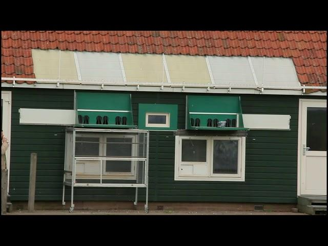 Vlog #23 Arrival pigeons from Tienen 13 4 2019