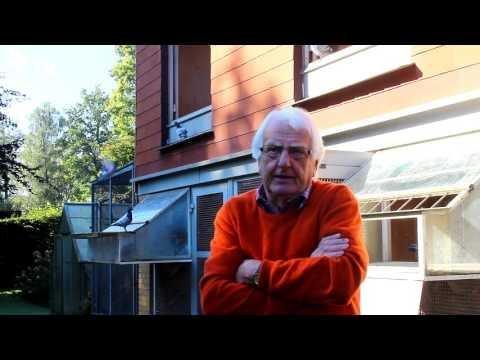 Wolfgang Roeper Interview Part 17/26 Zuchttauben paaren (Brieftauben)