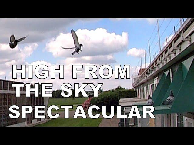 Vlog #92 HIGH FROM THE SKY SPECTACULAR ARRIVALS From 373km