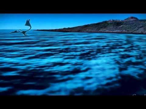 Arona-TENERIFE Pigeon Race - Virtual Flight from G.Canaria to Tenerife Island