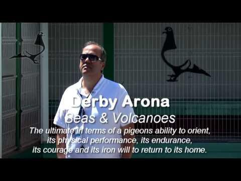 FINAL RACE 2014 ARRIVALS (Trailer) - Derby Arona-TENERIFE