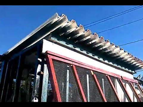 2014 pigeon breeding loft update