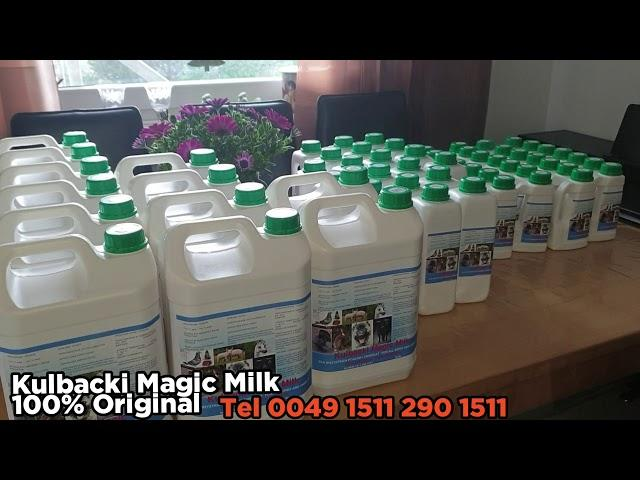 100% Original KULBACKI Magic Milk