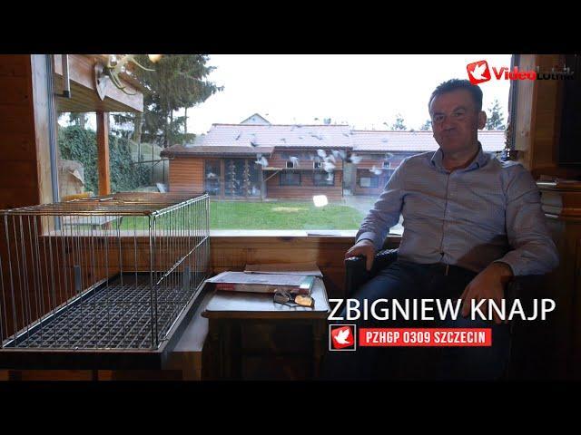 Zbigniew Knajp - Okres zimowy i wzmocnienie hodowli - gołębie Prange  PZHGP 0309 Szczecin