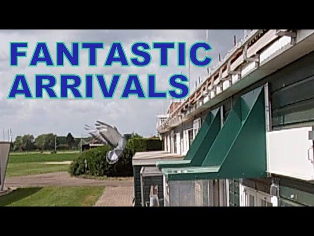 Vlog #85 FANTASTIC ARRIVALS First Race 2020 #HansAndEvertJanEijerkamp