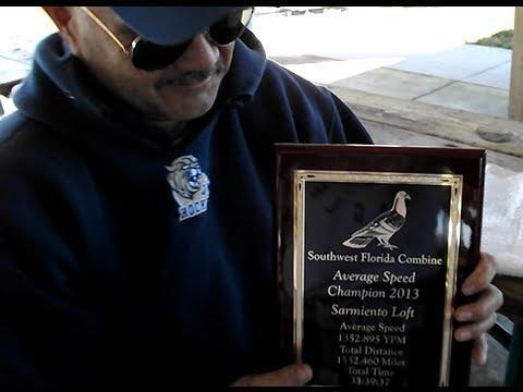 2013 Young Birds Winners -  Southwest Florida Pigeon Racing Combine