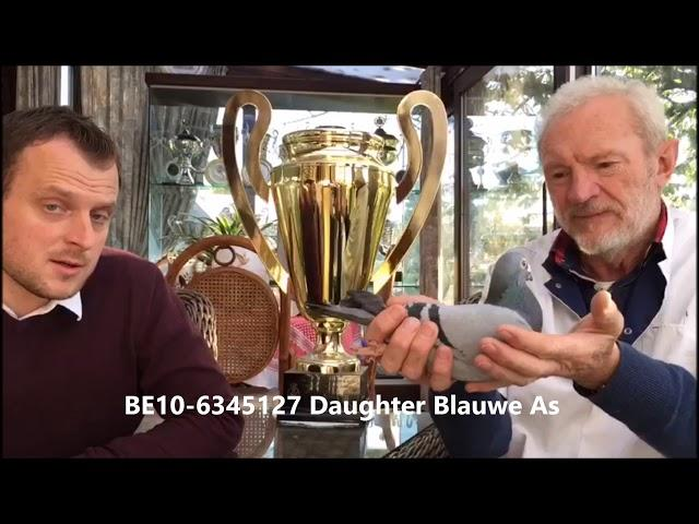 BE10-6345127 Daughter Blauwe As