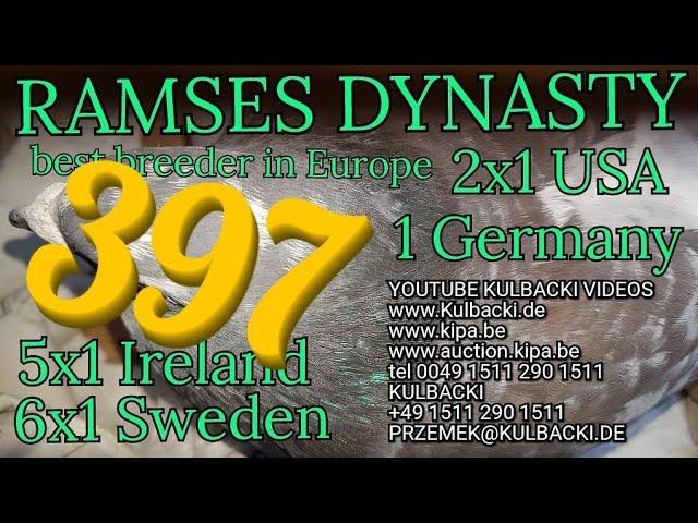 397, Dolce Vita x córka Ramsesa 14x1. (6x1 Sweden 5x1 Irland 2x1 USA 1xGermany) tel+49 1511 290 1511