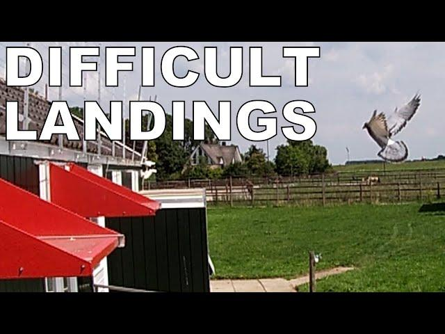 Vlog #100 DIFFICULT LANDINGS From 620km #HansAndEvertJanEijerkamp