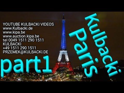 01.01.2018, Mes pigeons Kulbacki à Paris France partie 1