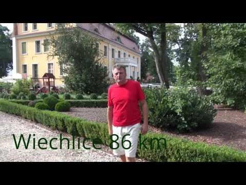 Lot treningowy gołębi z Wiechlic 86 km !