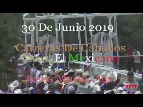 Carreras De Caballos Carril El Mexicano 30 d 2019