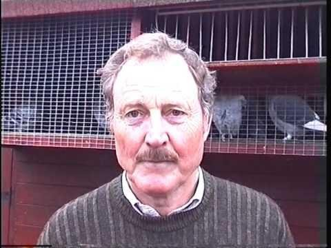 Video 332: Albert & Jan Deacon of Waterlooville: Premier Pigeon Racers