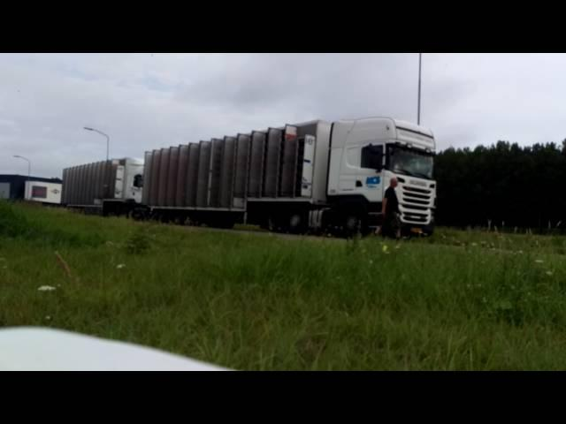 Duivenlossing Afd.10 rayon 5 t/m 8 Wijchen 20082016