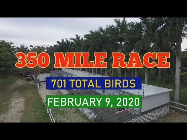 Florida Pigeon Derby