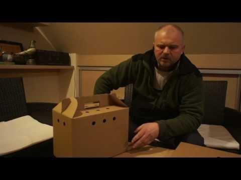 Karton transportowy na jednego lub dwa gołębie - prezentacja