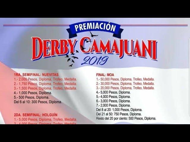 Pichones del DERVI de CAMAJUANI