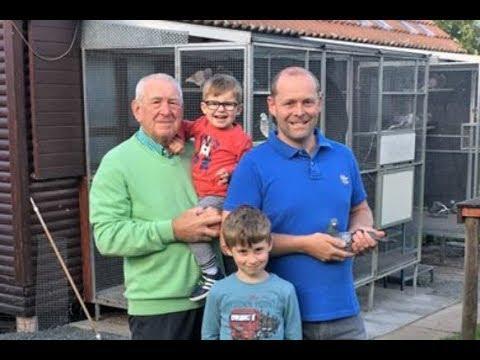 Dreampigeons op bezoek bij Bert en Raoul Penne Nederhasselt