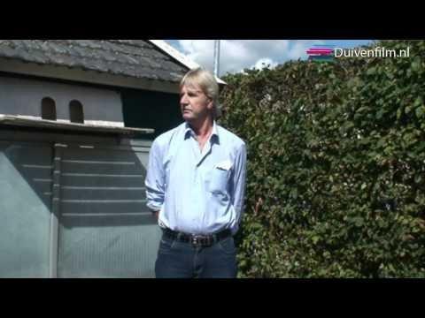 Duivenfilm Henk Schmitjes 2010