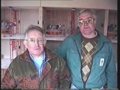Video 174: Albert & Dennis Taylor of Eastwood: Premier Pigeon Racers