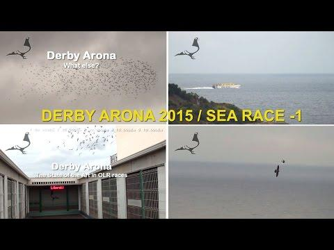 Arona-TENERIFE 2015 - SEA RACE-1