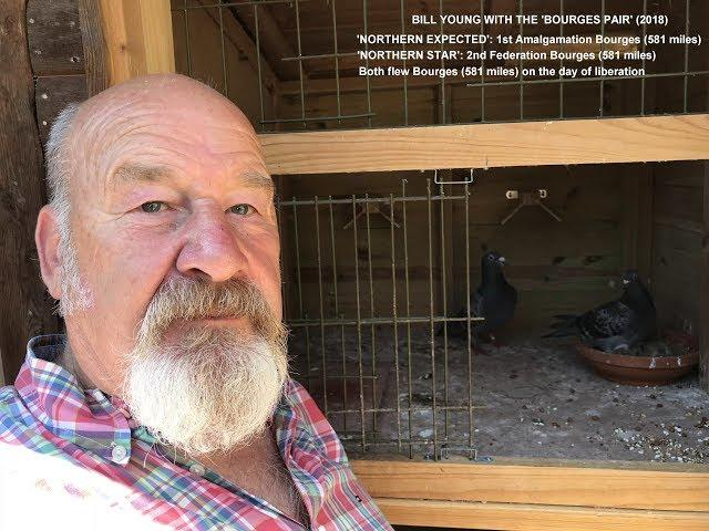 Video 380: Bill Young of Old Woking: Premier Pigeon Racer