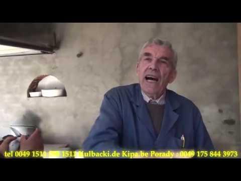 2 cześć, Królewska Rasa Kulbacki, wywiad z hodowcą, interview with breeder,JANSSEN MÜLLER MEULEMANS