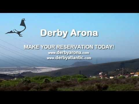 Arona-TENERIFE 2014 - Qualification Training-4