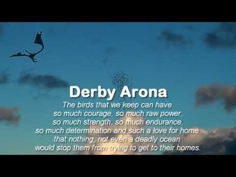 Arona-TENERIFE Pigeon Race 2012 - Survival Race Flock-C 16th Feb 2012