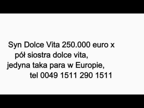 JUŻ SPRZEDANY ZA 2000euro, ojciec syn dolce vita x pół siostra dolce vita jedyna taka para w Europie