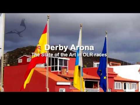 Derby ARONA SURVIVAL CAR RACE-1 2019