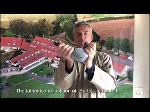 For sale grandson Bartoli NL18 1629499