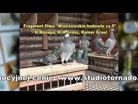 Karl Heinz Gross - Niemcy