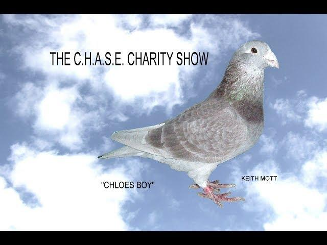 Video 412: C.H.A.S.E. Charity Pigeon Show: 'Looking Back Through The Years'