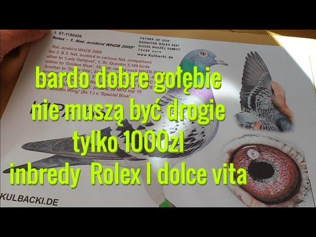 ROLEX 70.000 EURO można zamawiać młode z rodziny Rolex dolce Vita tylko 1000zl