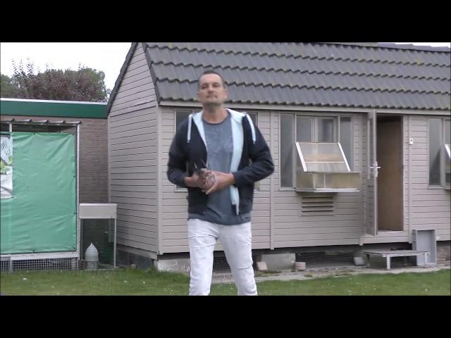 ZLU St Vincent - Thuiskomst duiven Frederik Leliaert