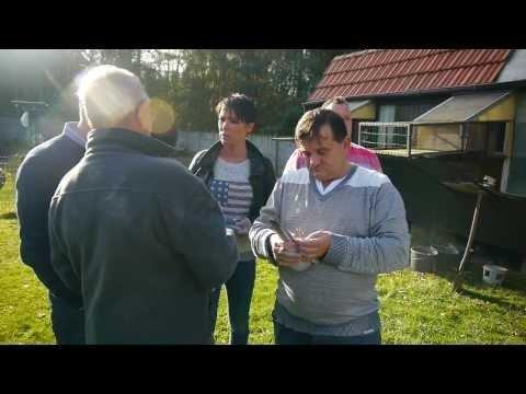 Rene Van den Broeck - Belgia - Zakupy Artura Pawelca