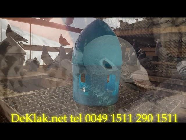 parki rozpłodowe cena od 600zl parka, Verbarty KLAK Janssen Meulemans Huyskens 0049 1511 290 1511