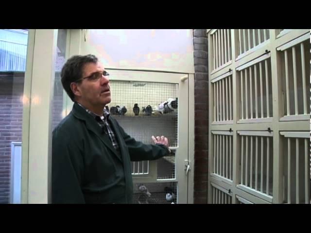 De Zwarte Vogel (Deel 4) - Programma Tiswat, TV West
