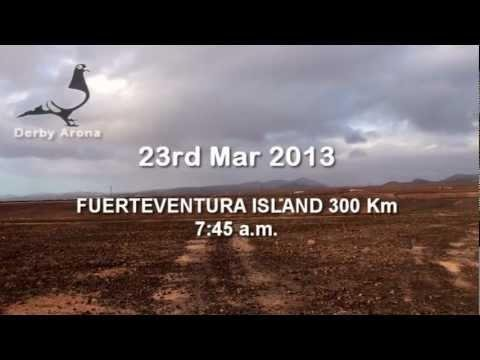 Arona-TENERIFE 2013 - FINAL RACE (LIBERATION)