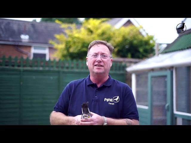 PIPA TV: Derek Rooney (UK)