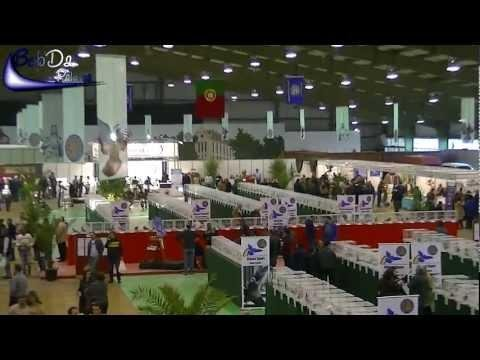 40th Racing Pigeon Exhibition in Portugal 2013
