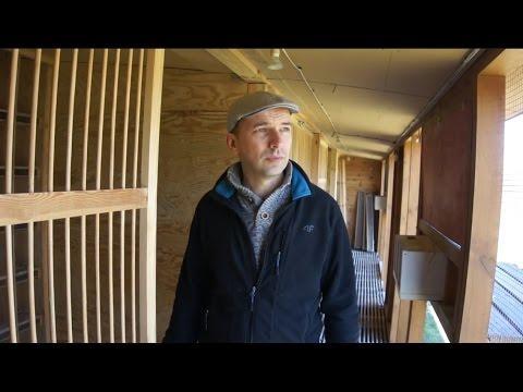 Wspólny Gołębnik Czersk - zaproszenie - 01.04.2016r