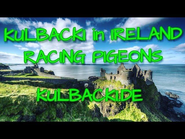 #IRLANDIA #IRELAND *PART 1* CZĘŚĆ 1 TEL +49 1511 290 1511