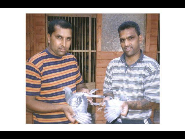 Video 436: Khan Brothers of Kingston: Premier Pigeon Racers