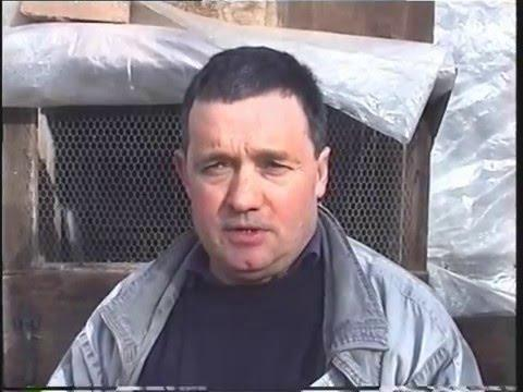 Video 73: John Smale of Wales: Premier Pigeon Racer