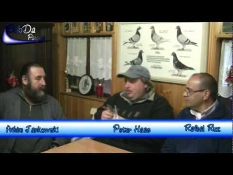 Interview Peter Haas (Racing Pigeons, Brieftauben, Palomas) 2012