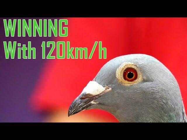 Vlog #65 WINNING 1st With Speed 120km/h